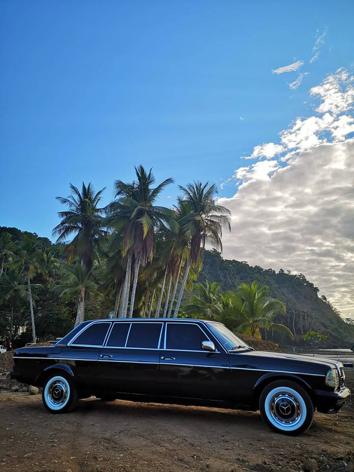 JACO-BEACH-PALM-TREE-LIMOUSINE-CENTRAL-AMERICA8a143a8195972626.jpg
