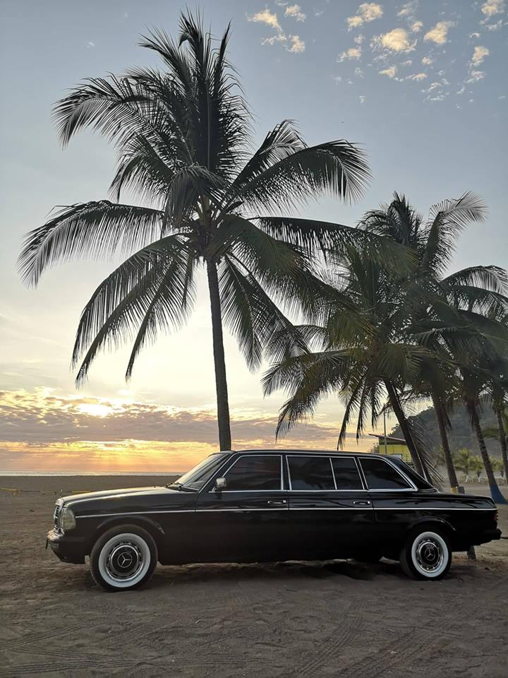 PALM-TREE-LIMOUSINE-CENTRAL-AMERICAebf2866d39219b05.jpg