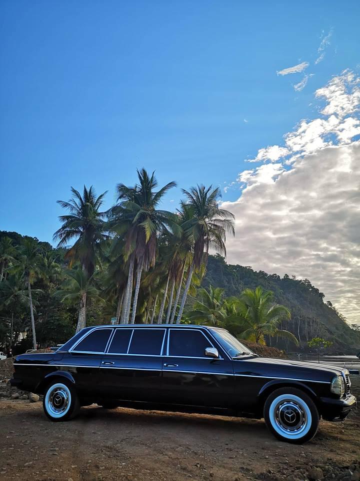 JACO-BEACH-PALM-TREE-LIMOUSINE-CENTRAL-AMERICA8a143a8195972626.jpg